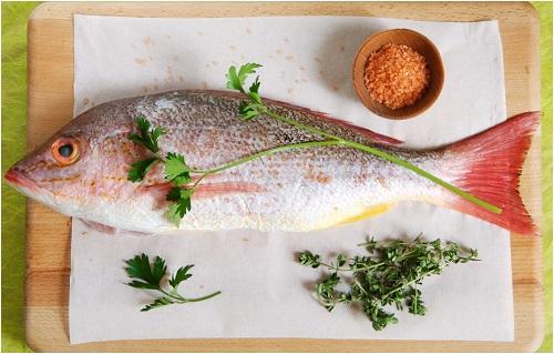 Consumir peixes todos os dias faz bem para saúde… Será?